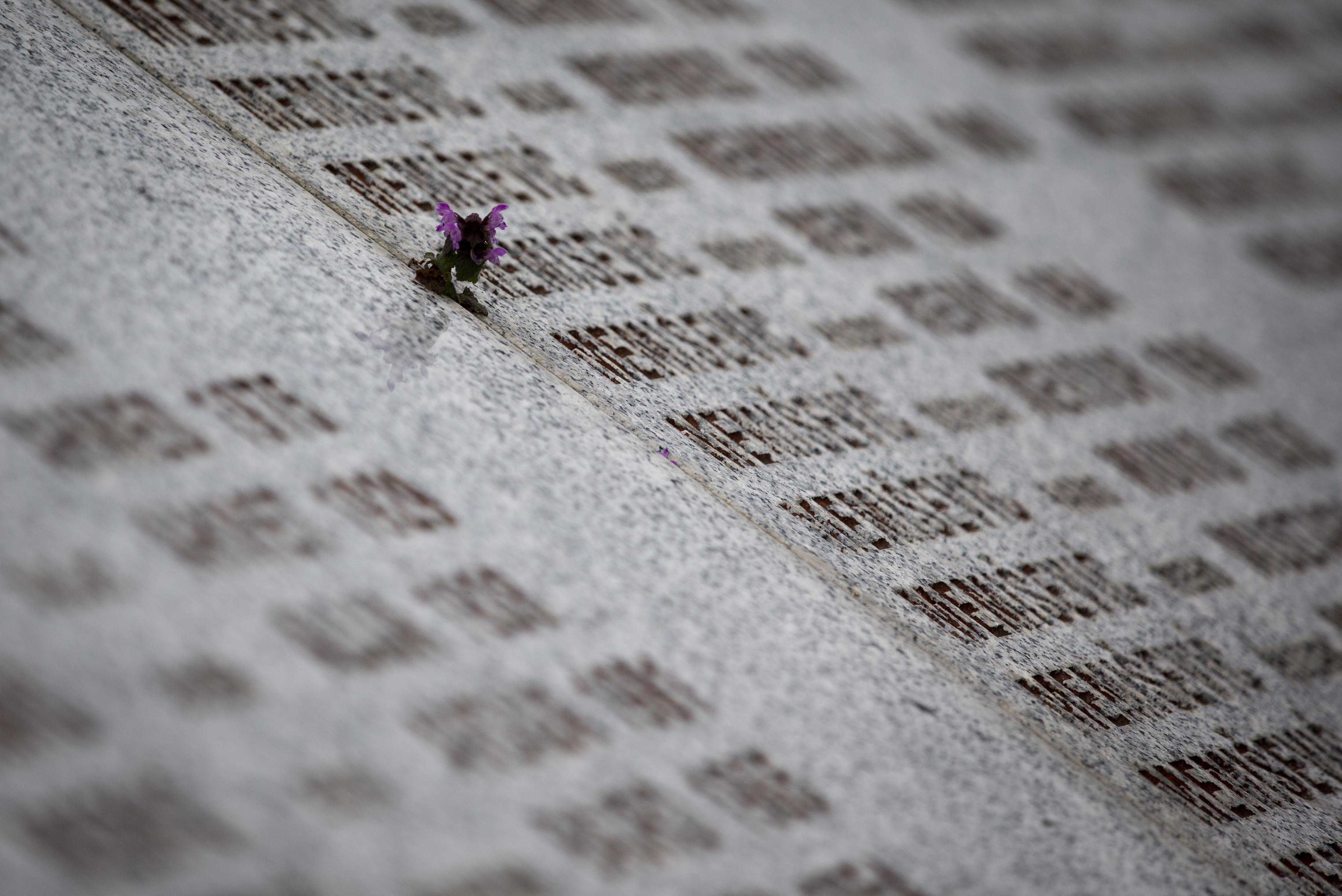 (AP Photo/Darko Bandic)