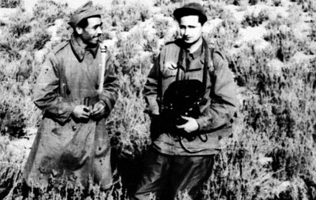 Labudović na alžirskom frontu