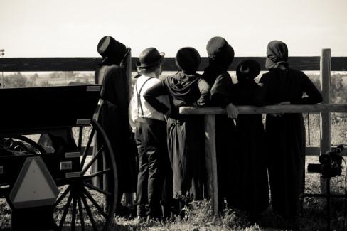 Amiši, koronavirus